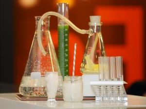 Ciência Viva Internship Programme